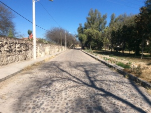 The Cobblestones of San Miguel de Allende