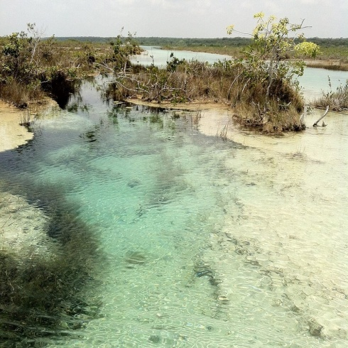 The south end of Laguna Bacalar.