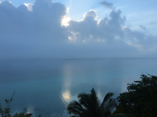 Blue morning.
