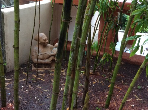 The bamboo explodes with growth in the rain.